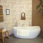Douche-et-baignoires-Photo14